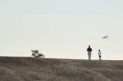 Article : Une pensée pour tous les pères, ces oubliés