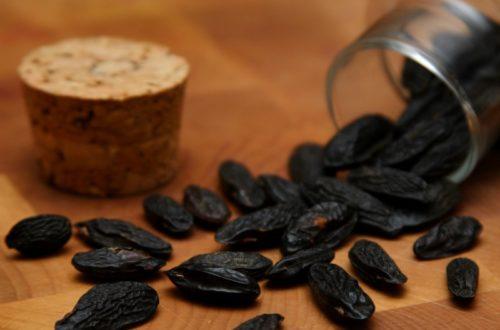 Article : Henri et le grain de haricot