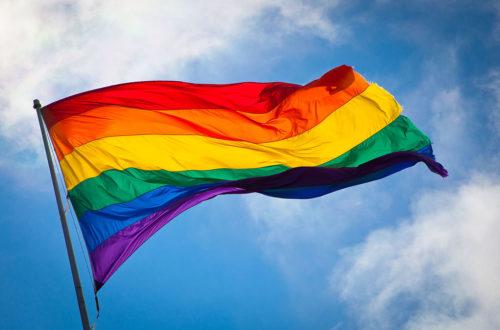 Article : LGBT : T comme Transgendérisme négationniste
