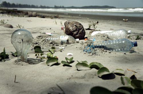 Article : COP21-Paris : l'Afrique au rendez-vous des gros pollueurs