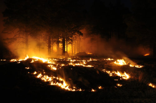 Article : Haïti en flammes