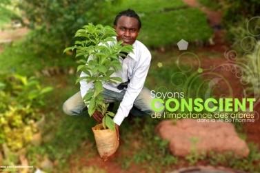 Africa Green Challenge