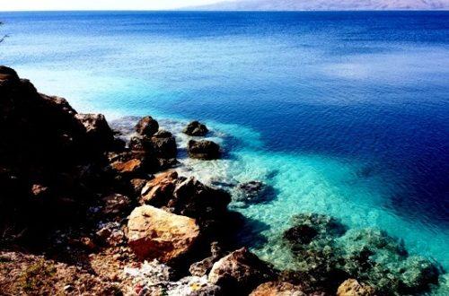 Article : Cinq raisons de passer mes vacances en Haïti