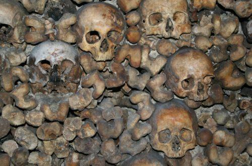 Article : Comment nos os craquent dans le silence de la mort qui nous guette
