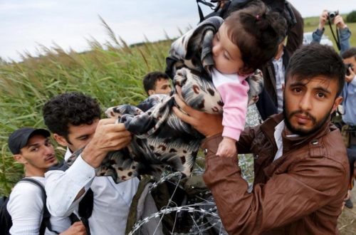 Article : Migrants : les murs se hérissent, les démocraties flétrissent