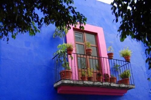 Article : Au moins 25 bonnes raisons pour vous rendre à Mexico cet été !