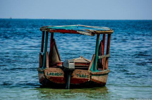 Article : Haïti : l'art de flotter sur l'abîme !