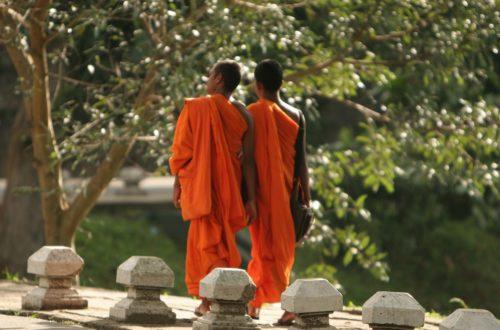 Article : Enfant moine
