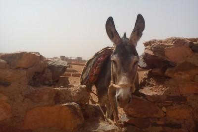 Maroc chantiers