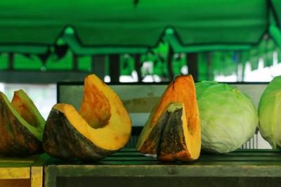 Légumes bio Melon