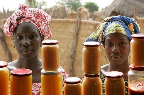 Article : A Mombeya, les paysans créent une fédération de producteurs