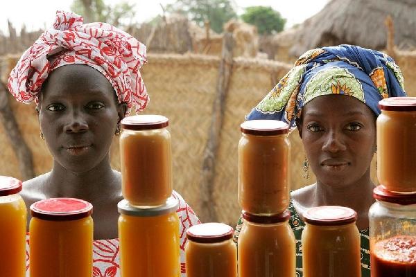 agriculteurs Guinée