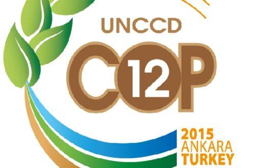Article : COP 12 UNCCD : une journée dédiée aux autochtones et locaux à Ankara