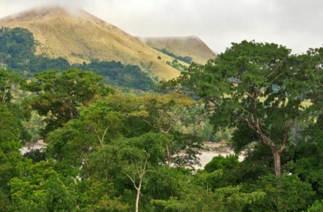 Déforestation et gaz a effet de serre en Afrique