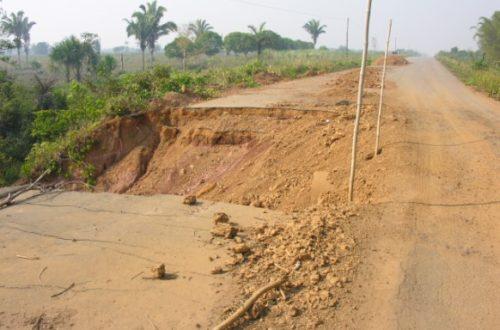Article : La route BR-319 : les Amazoniens ont besoin de cette voie
