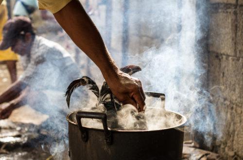 Article : Bamako : pendant les fêtes de fin d'année, le poulet est roi