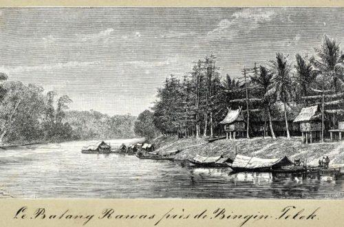 Article : Mon cousin l'austronésien : D'où viens-tu ? (Partie 1)