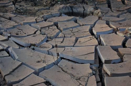 Article : A la COP21, l'Afrique a réclamé une réparation de l'injustice climatique