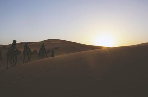 Article : Tous nomades ! Naître libre et le rester…