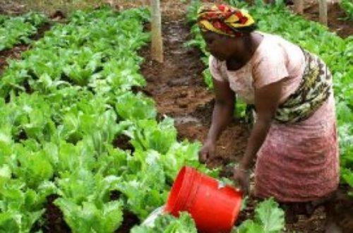 Article : « Chaque problème d'un africain est une idée de création d'entreprise »