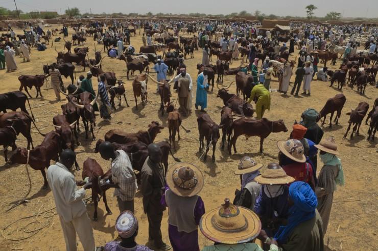 Niger, juillet 2012
