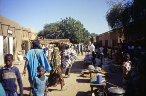 Article : Nos enfants de rue