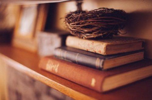 Article : Il y a quoi dans les livres?