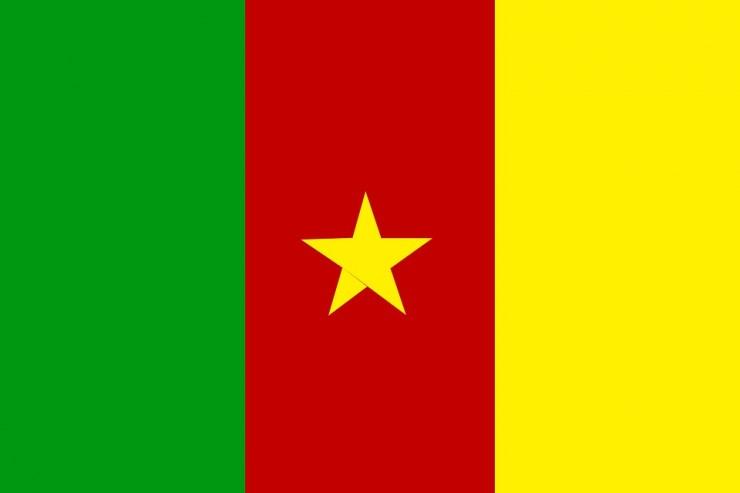 Photo du drapeau du Cameroun