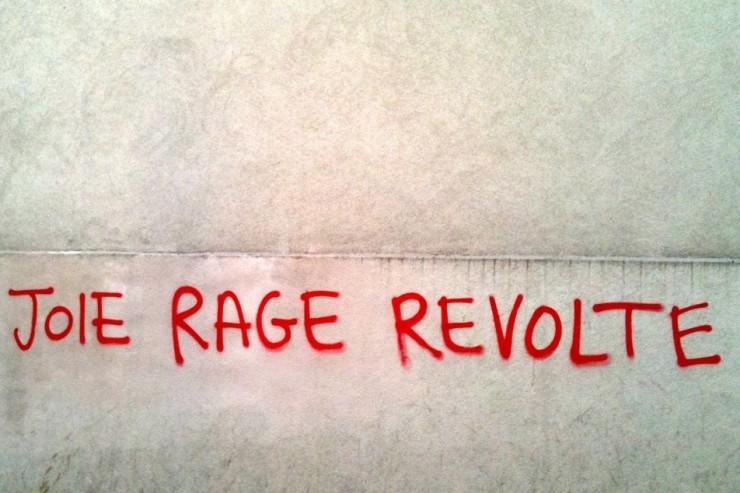 joie_rage_revolte