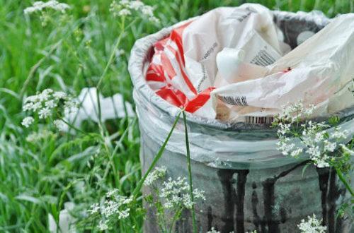Article : Le génie congolais du recyclage