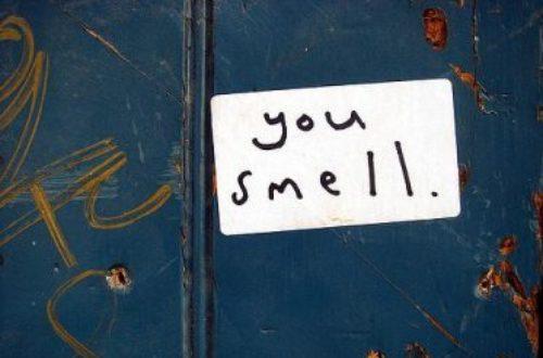 Article : Les odeurs féminines
