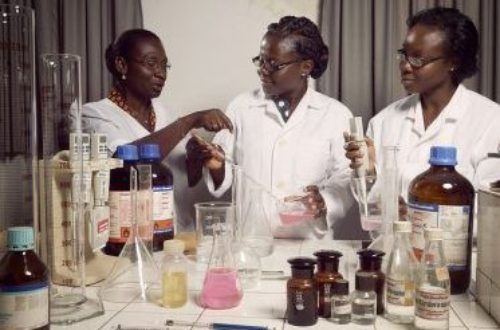 Article : Éducation au Togo: Jusqu'où descendrons nous? (1)