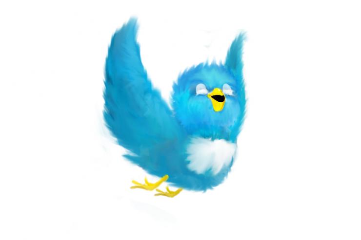 Twitter_bis