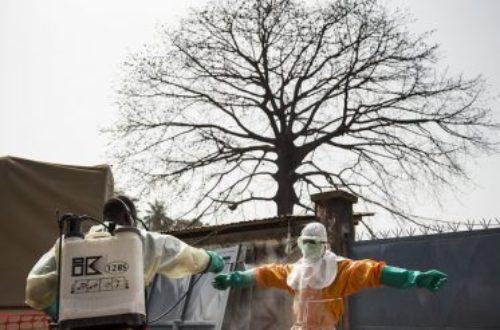 Article : « Face à une menace comme Ebola, nous les jeunes devons impérativement agir »