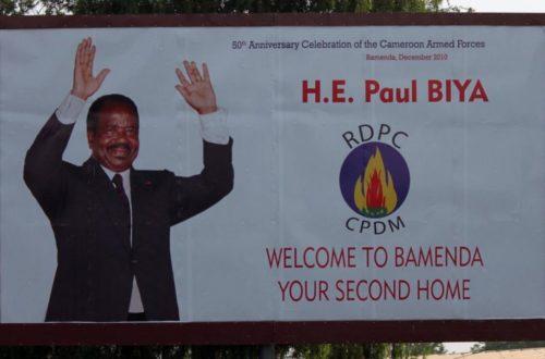 Article : En 2018, je châtierai la présidentielle camerounaise en riant