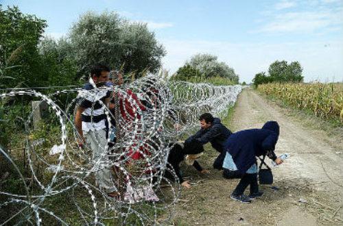 Article : Il faut sauver le migrant anonyme