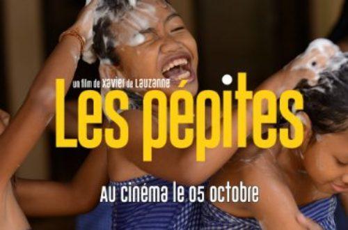 Article : «Les Pépites» de Xavier de Lauzanne