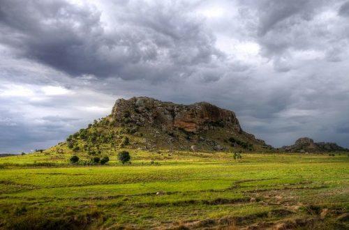 Article : La théorie de l'origine malgache : pourquoi c'est plausible