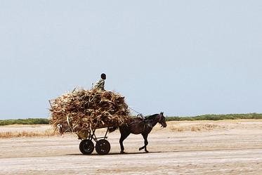 Quel avenir pour les politiques au Sahel.