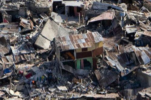Article : L'état d'urgence environnemental en Haïti