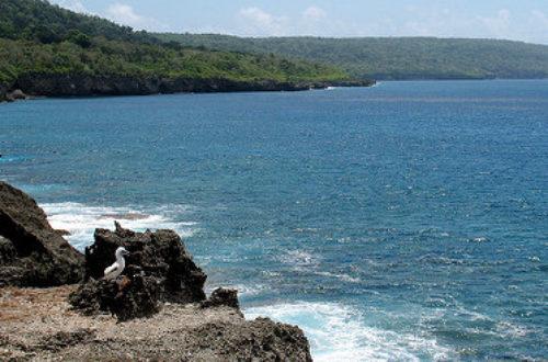 Article : «The Island»: plongée dans la réalité des demandeurs d'asile sur l'île Christmas