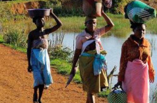 Article : À la quête des origines du peuple malgache