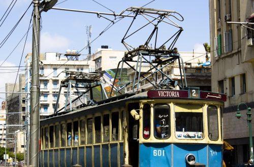 Article : Les pépites de Mondoblog : les chemins d'Alexandrie