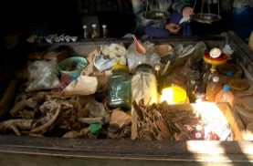 Herbes pour médecine traditionnelle