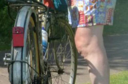 Article : La route de l'EuroVelo 12, la mer du Nord à vélo