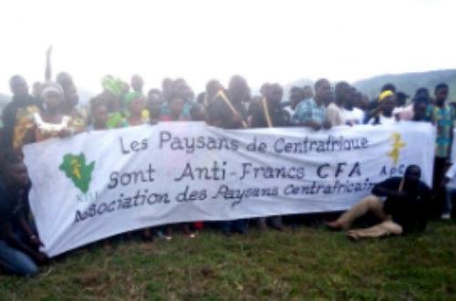 Article : Les Paysans Centrafricains offrent un asile doré à Kémi Seba