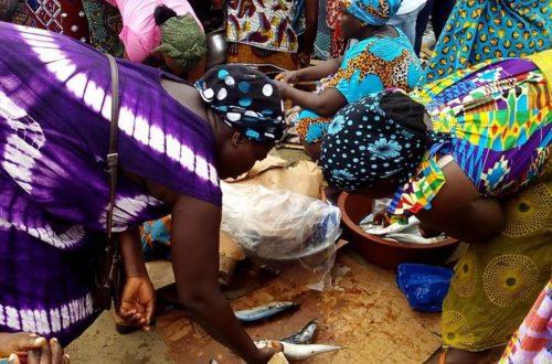 Article : Femmes ivoiriennes, une solidarité autour du poisson pour la survie
