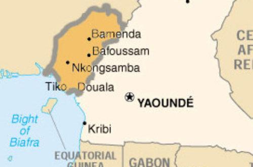Article : La longue marche vers la sécession au Cameroun
