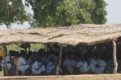 Article : Les établissements scolaires que le ministre camerounais devrait fermer