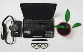 internet-environnement-plante